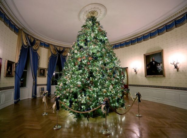 white house christmas tree 2019